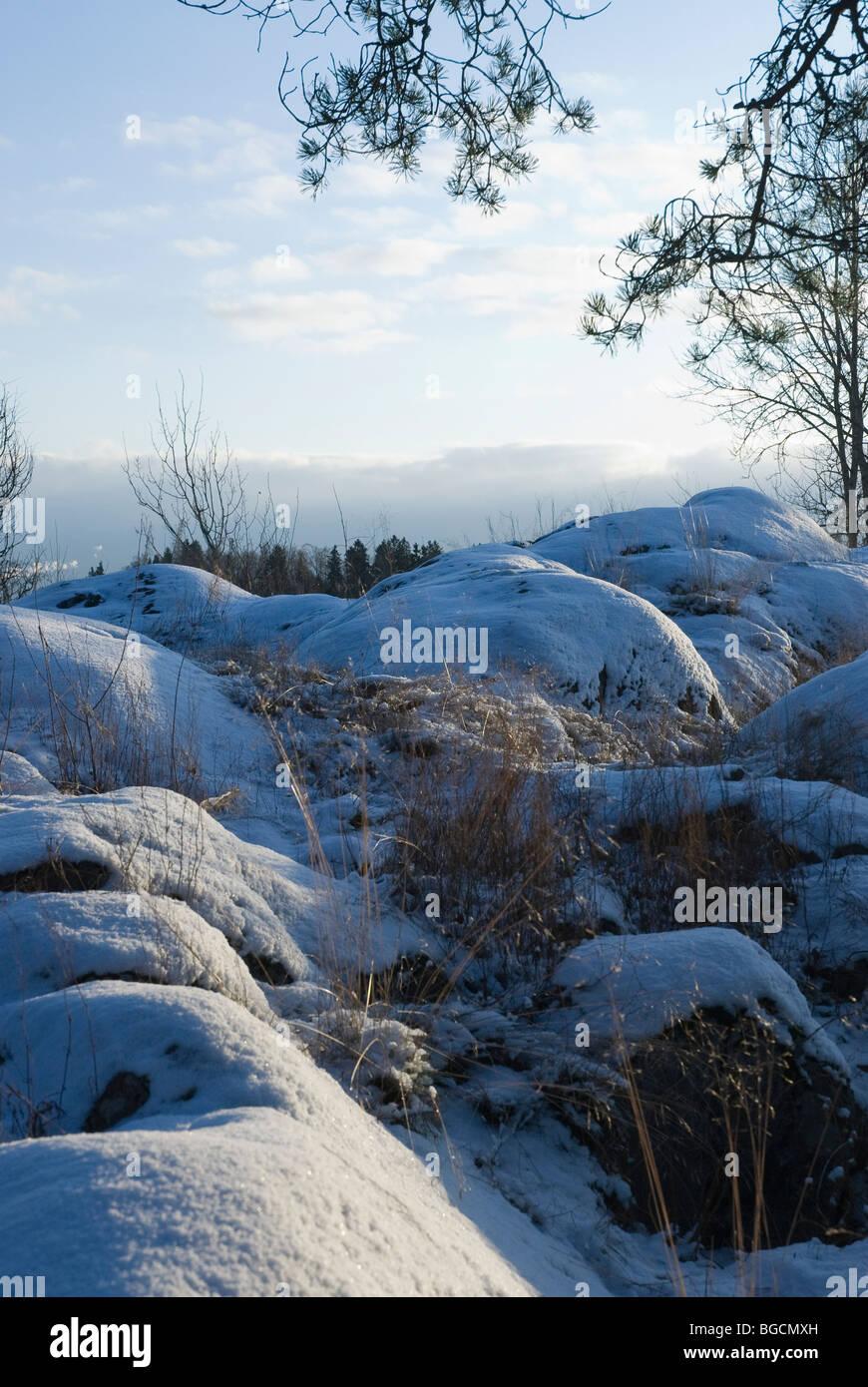Finnish winter landscape - Stock Image
