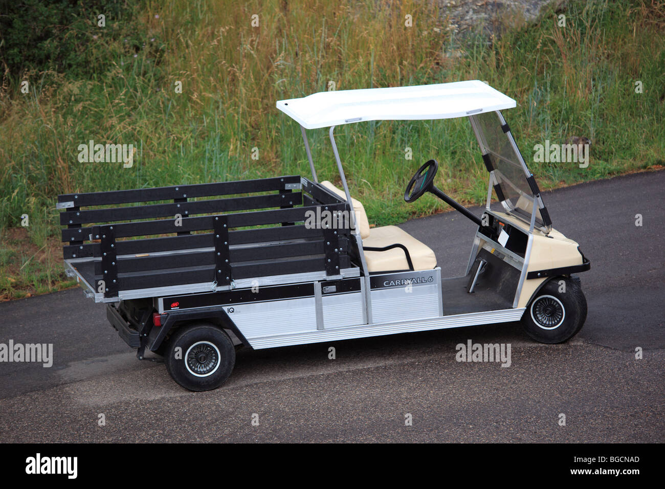 Electric vehicle used on a golf course. - Stock Image