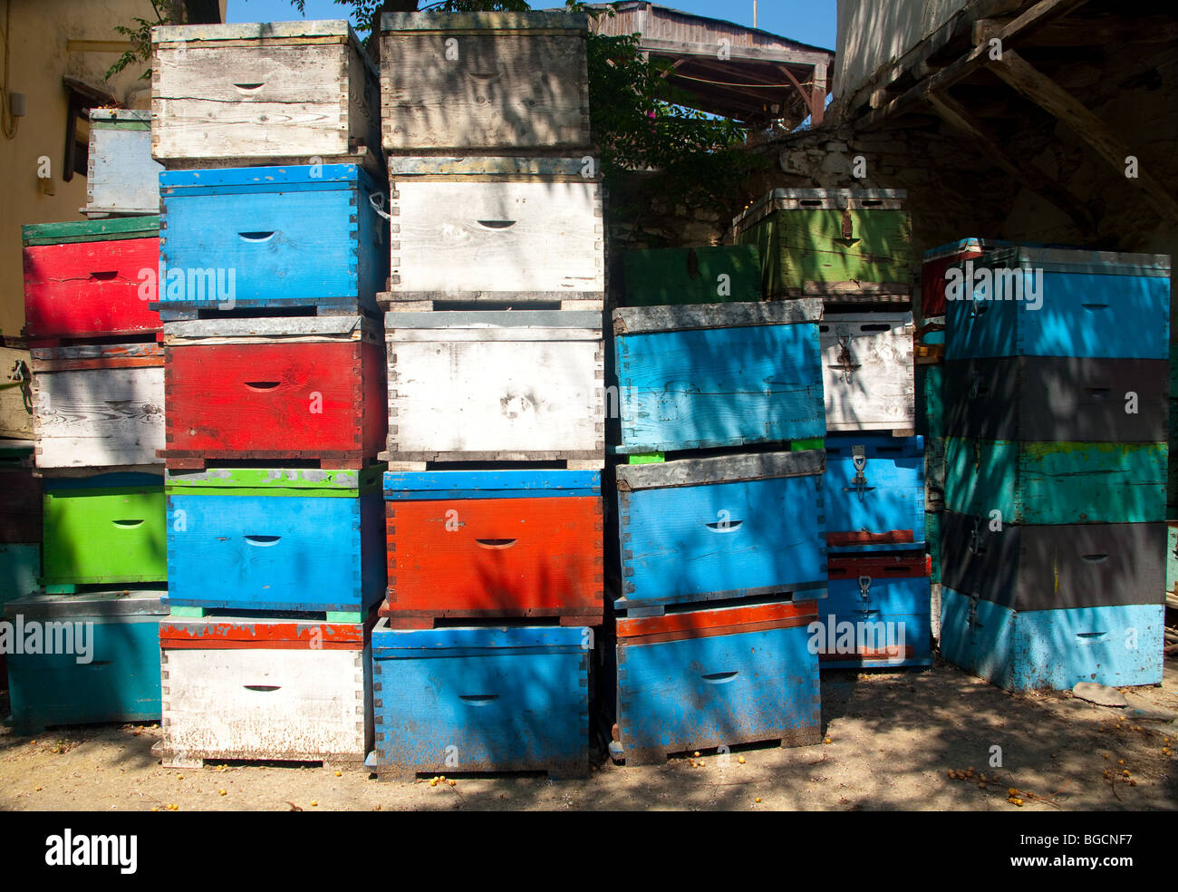 Colourful olive boxes are stacked in the yard of a warehouse used by