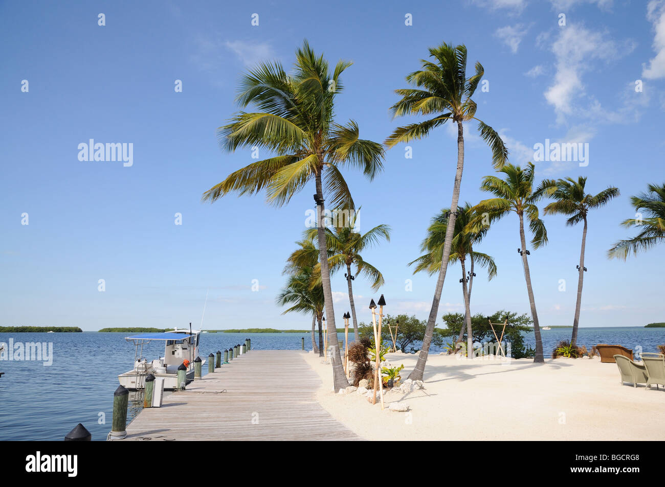 Jetty and Palm Trees on Florida Keys - Stock Image