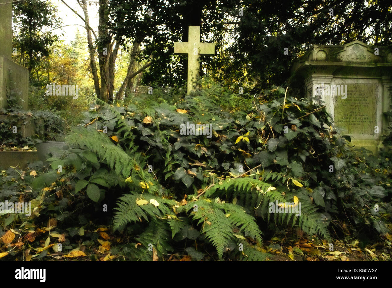 gravestones and undergrowth in Highgate Cemetery in London England UK - Stock Image