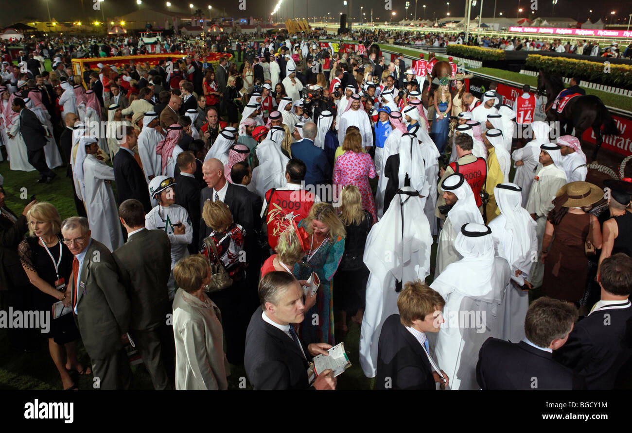 The participants of the Dubai World Cup in the show ring, Dubai, United Arab Emirates Stock Photo