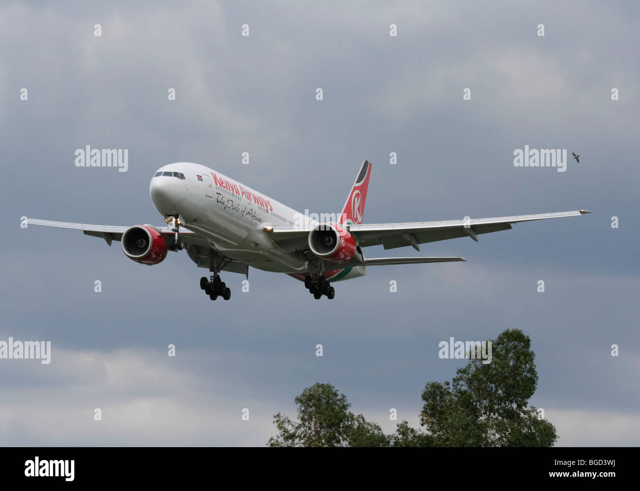 Kenya Airways Boeing 777-200ER on arrival - Stock Image