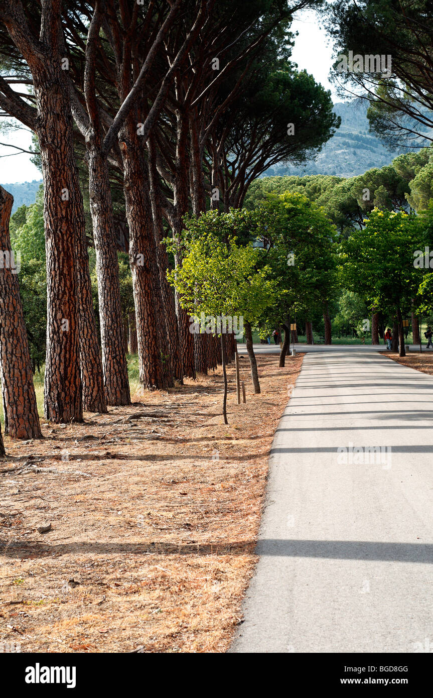 One of the roads leading to El Escorial in Madrid, Spain. UNESCO World Heritage Site. Stock Photo