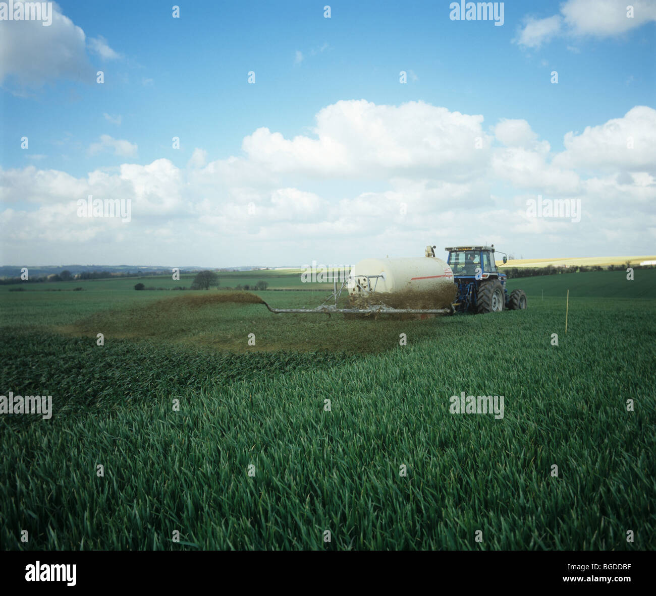 Tractor with Tramspreader, spreading slurry, organic fertilizer, on wheat crop, Hampshire - Stock Image
