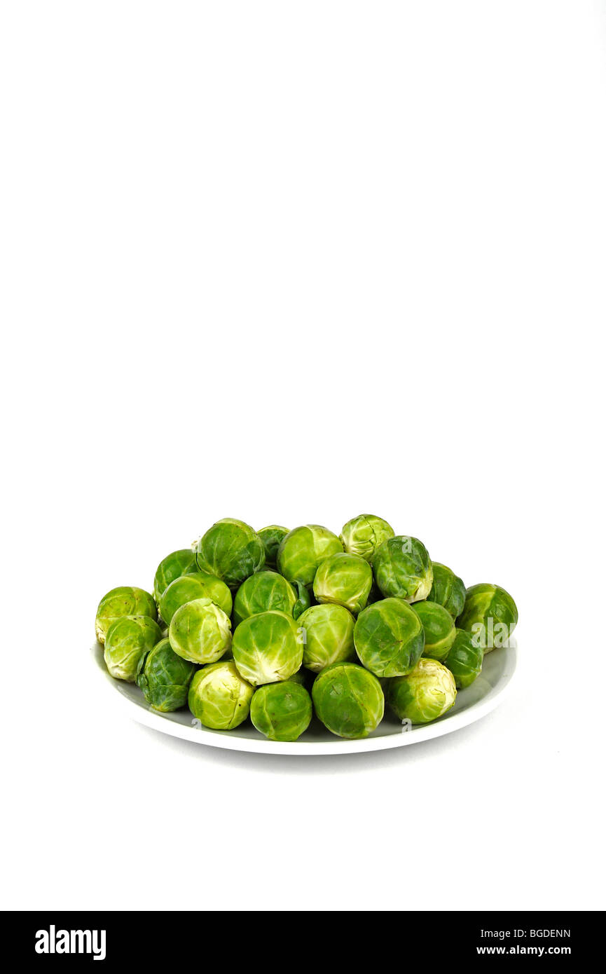 Brussels sprouts (Brassica oleracea) - Stock Image