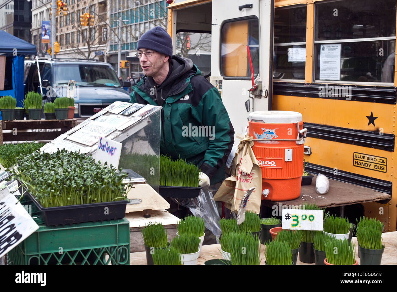warmly dressed man selling wheatgrass & sunflower sprouts outside at the winter farmers green market in Union - Stock Image
