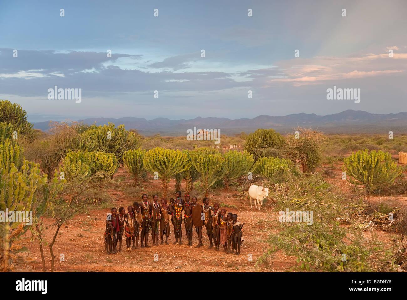 Hamer Dancers, Omo Valley, Ethiopia - Stock Image