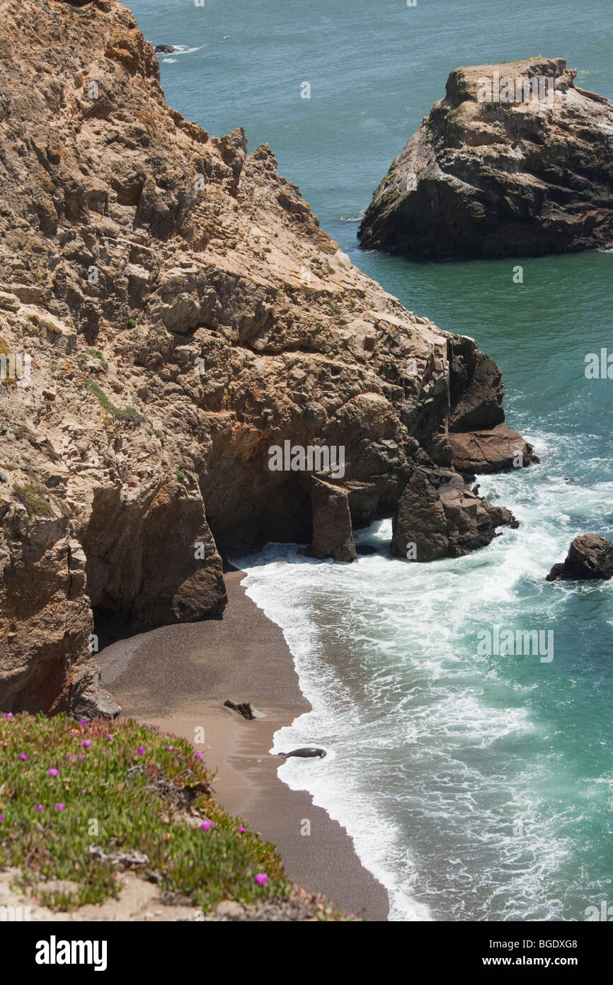 Rugged coastline and Pacific Ocean at Chimney Rock, Point Reyes National Seashore near San Francisco, California. - Stock Image