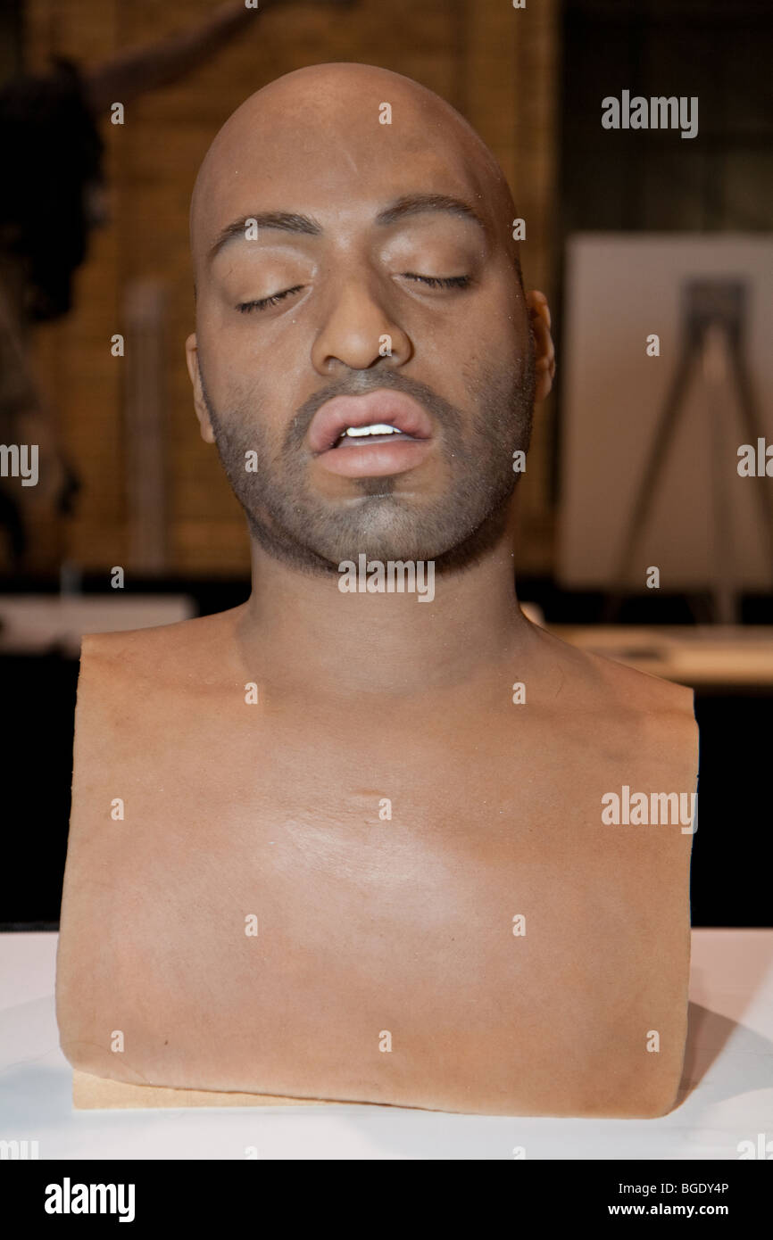 Realistic human head sculpture at the International Make-Up Artist Trade Show (IMATS) 2009 Toronto - Stock Image