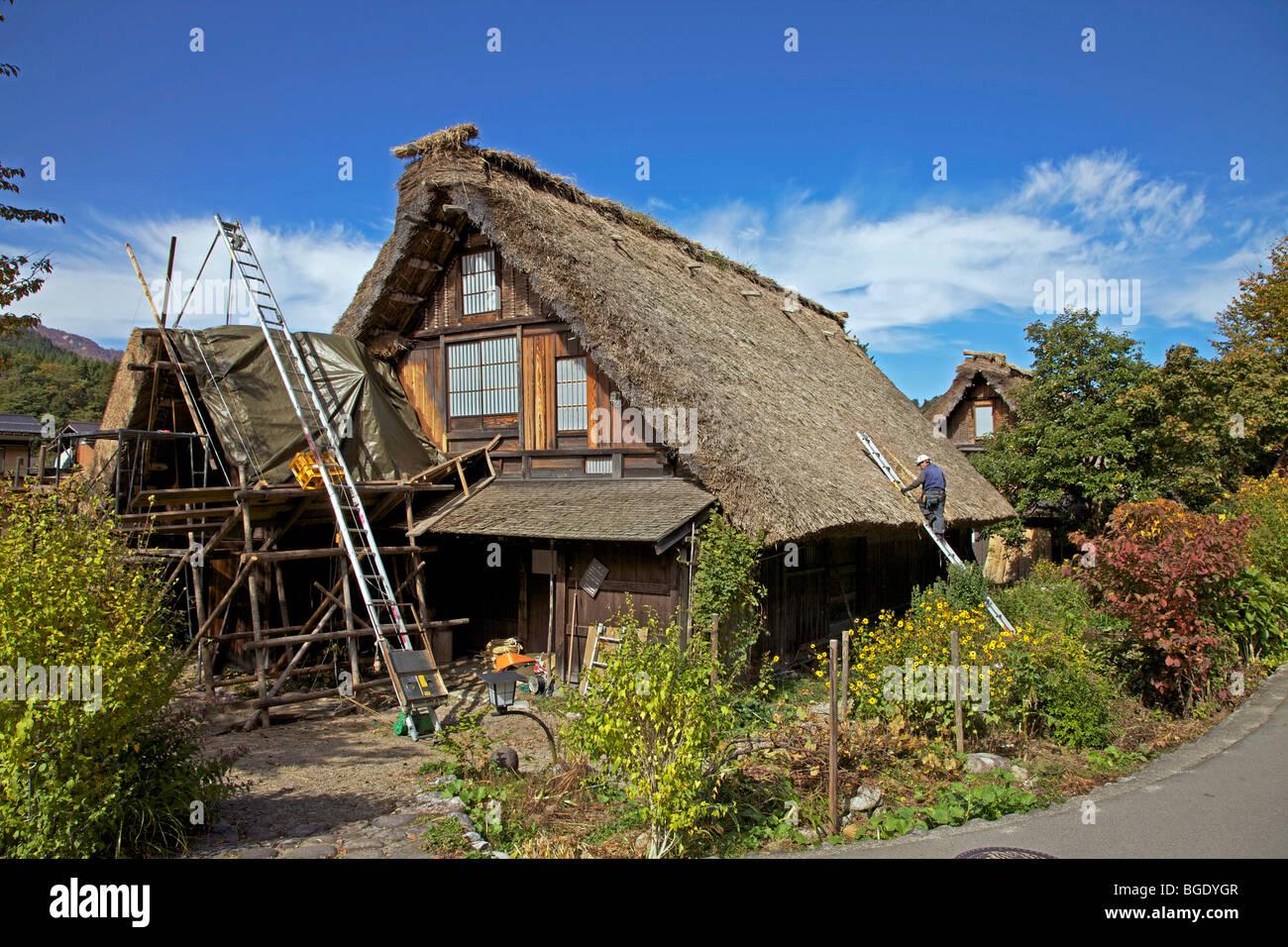 Re-thatching traditional thatched farmhouse at Shirakawa Go village, Gifu Prefecture, Japan - Stock Image