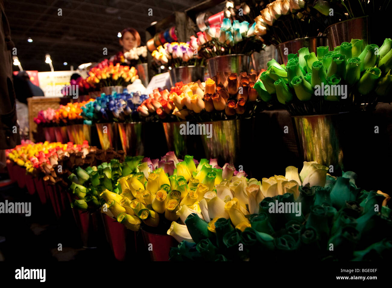 Wooden roses flowers of different colors red, orange, pink, green, purple, blue, lime - Stock Image