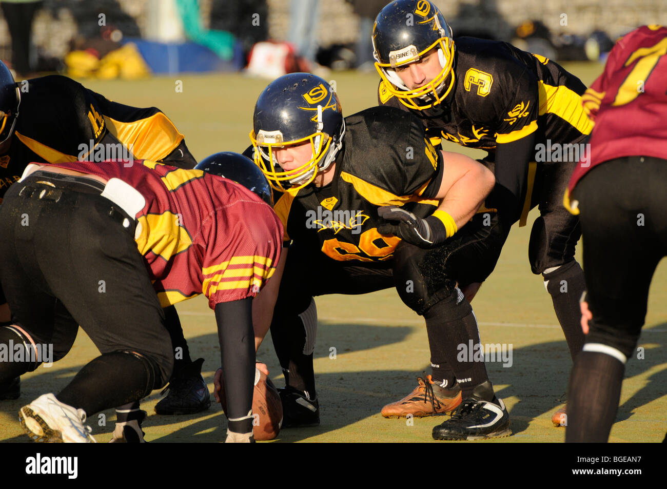 Center and Quarterback of Sheffield Sabres, Sheffield University American Football team. - Stock Image