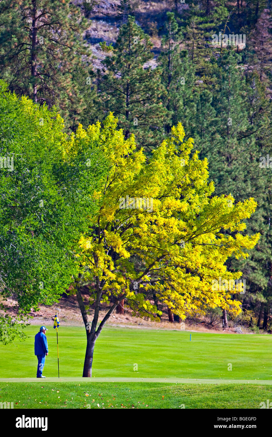 Person on a putting green at the Twin Lakes Golf & RV Resort, Marron Valley, Highway 3A, Okanagan-Similkameen - Stock Image
