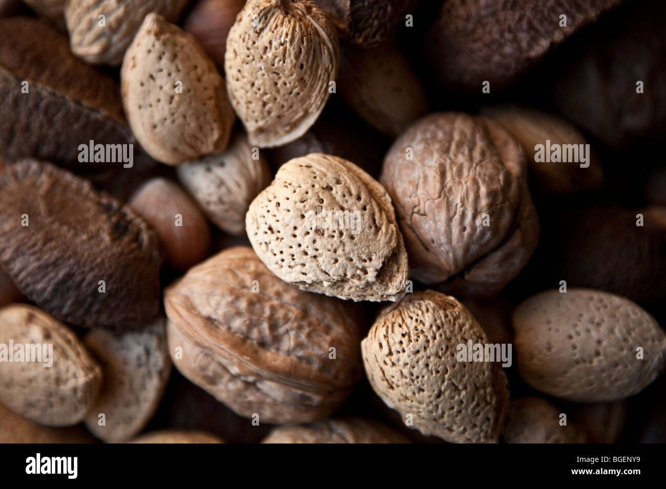 mixed nuts in their shell in a bowl - Stock Image