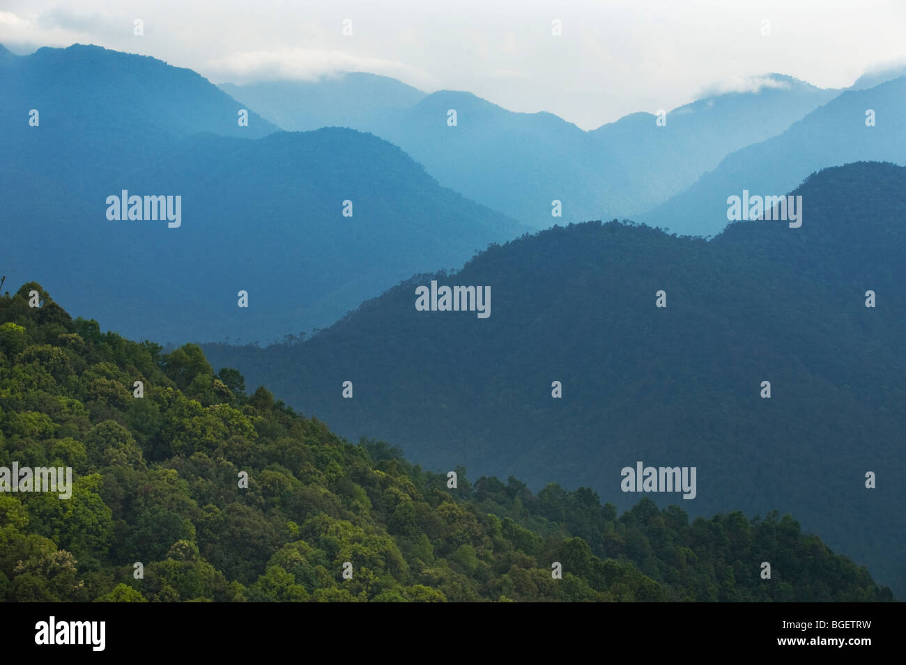 Black Mountain National Park above Shemgang Valley, BHUTAN Stock Photo
