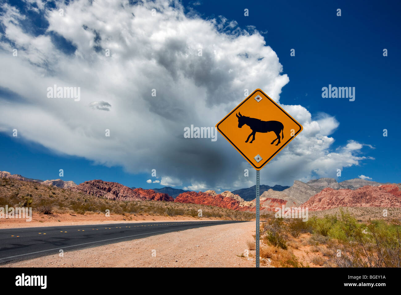Road, mule sign, thunderstorm clouds and Rock formations in Red Rock Canyon National Conservation Area, Nevada - Stock Image