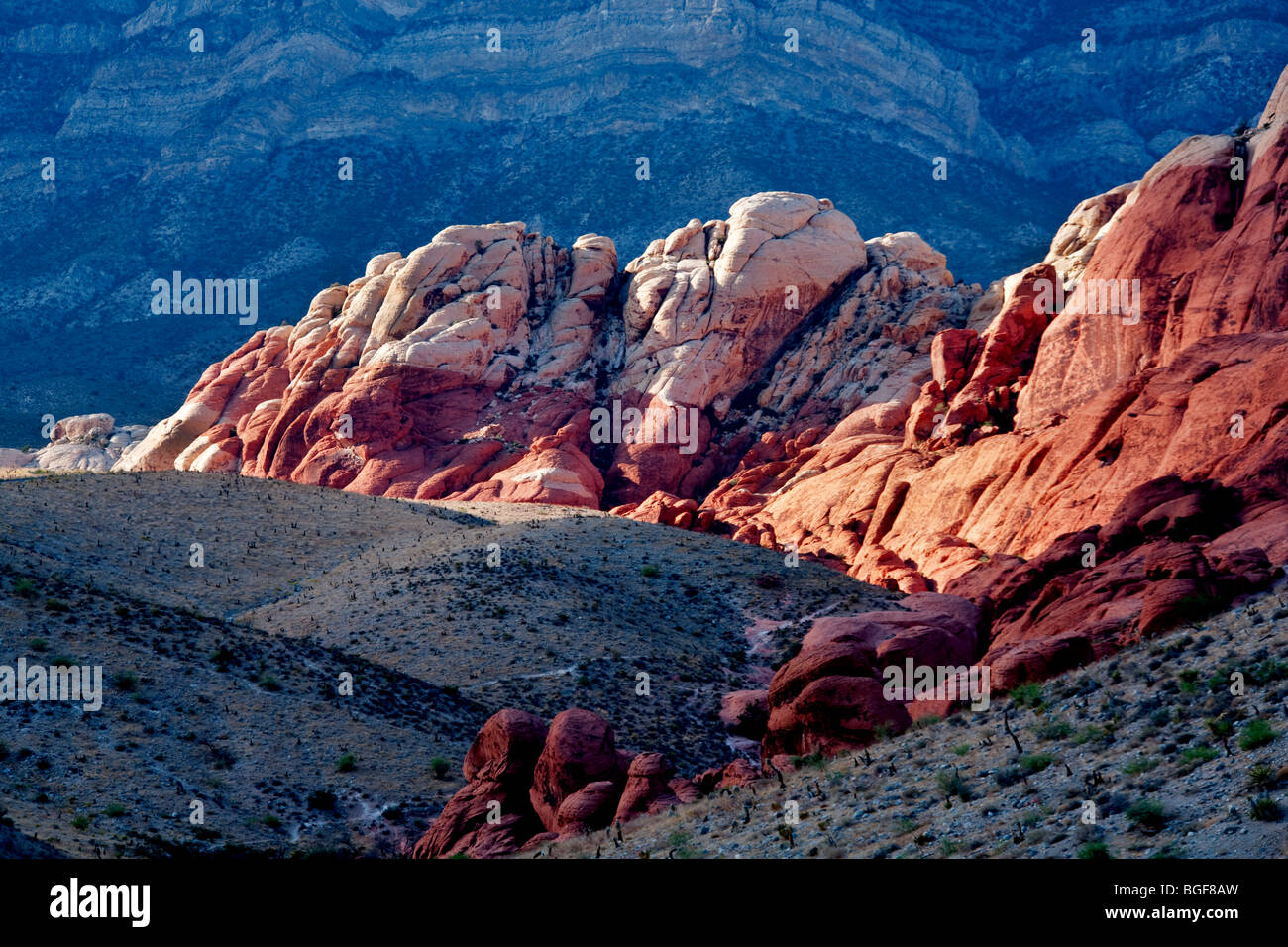 Rock formations in Red Rock Canyon National Conservation Area, Nevada - Stock Image