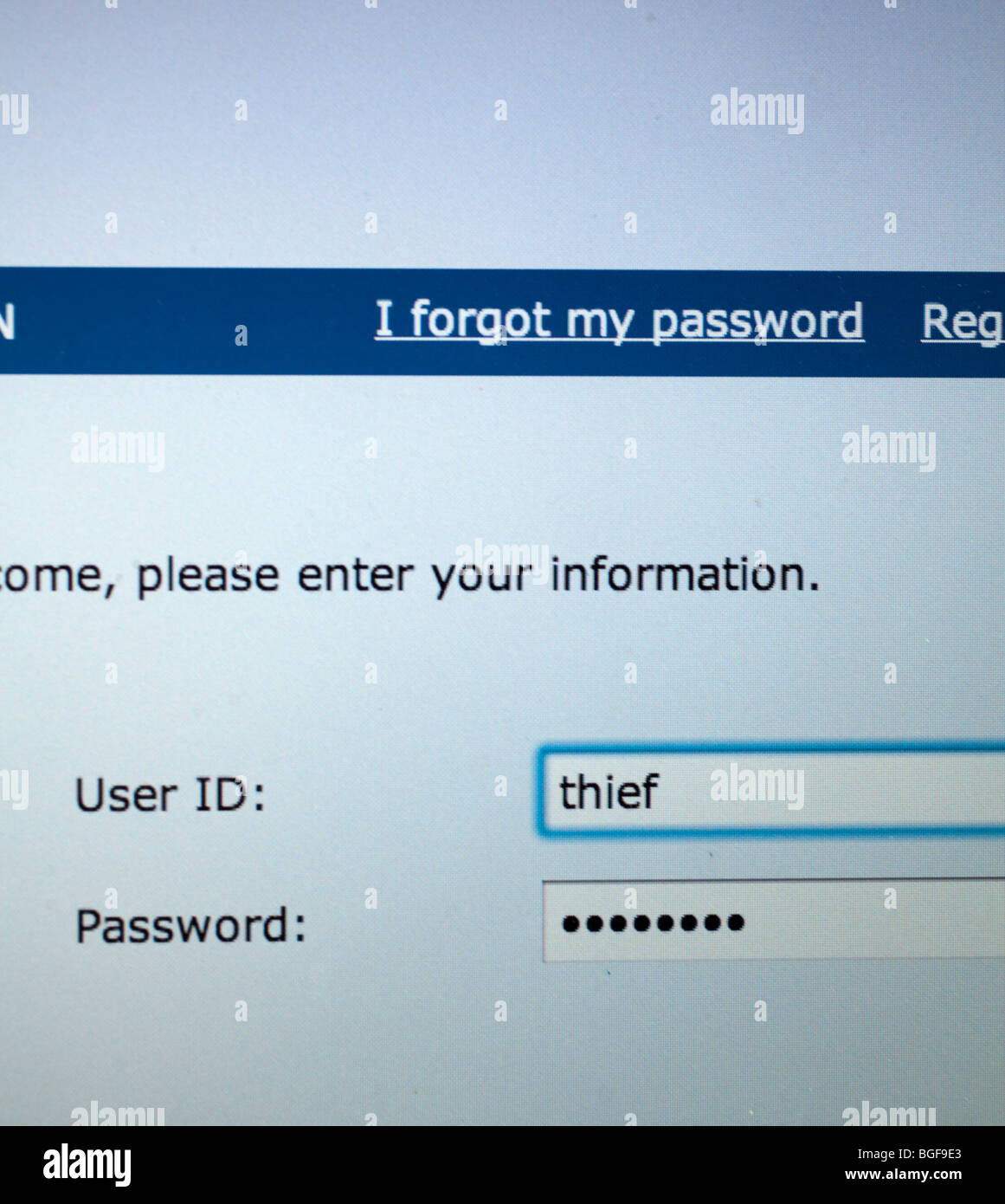 computer screen showing logon page with user id of thief - Stock Image
