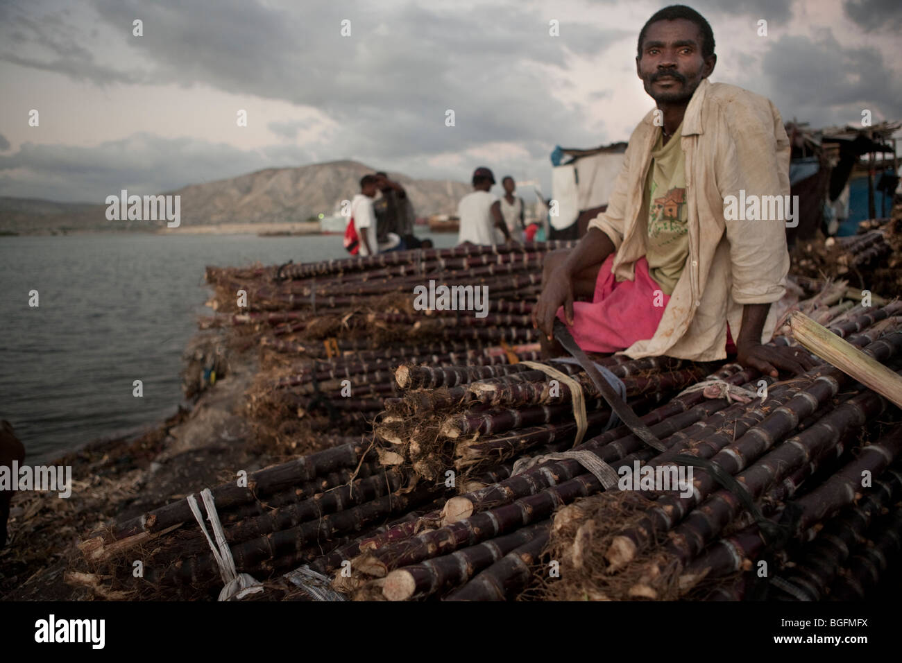 A dock worker sits on top of bundles of sugarcane at the port Gonaives, Artibonite Department, Haiti - Stock Image