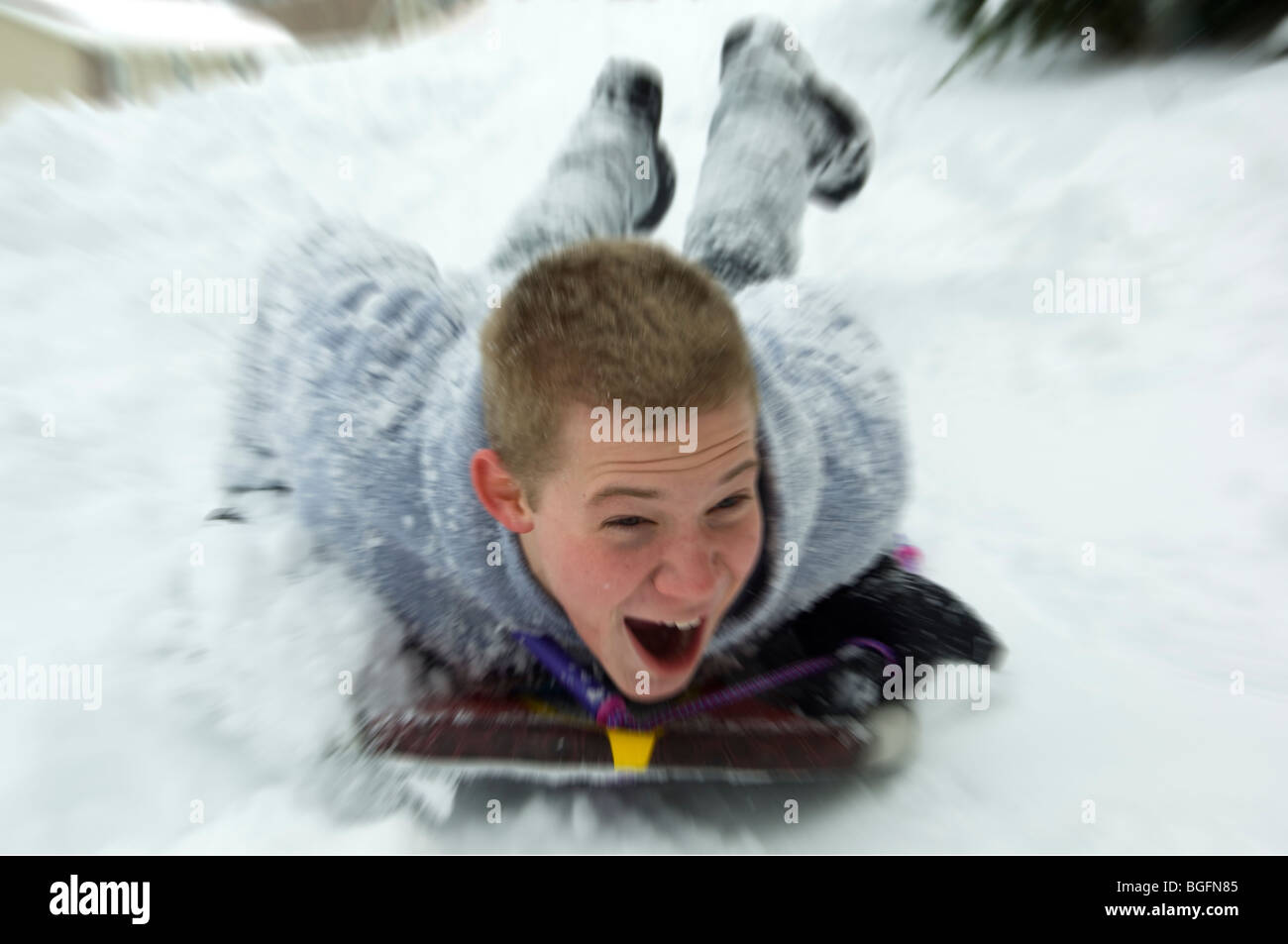 Teenage male sledding down hill - Stock Image