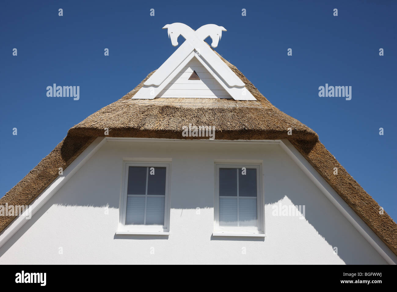gable of a holiday house in the northeast side of the Rügen, Mecklenburg-Vorpommern, Germany, Europa. - Stock Image