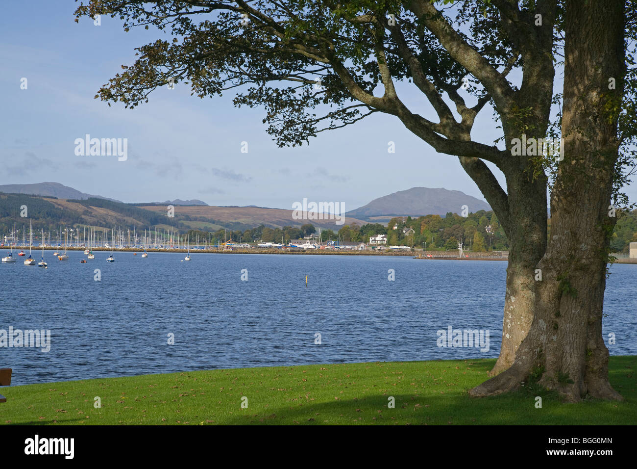 Looking up Gare loch from Rhu, Helensburgh, Argyll, Scotland, October, 2009 - Stock Image