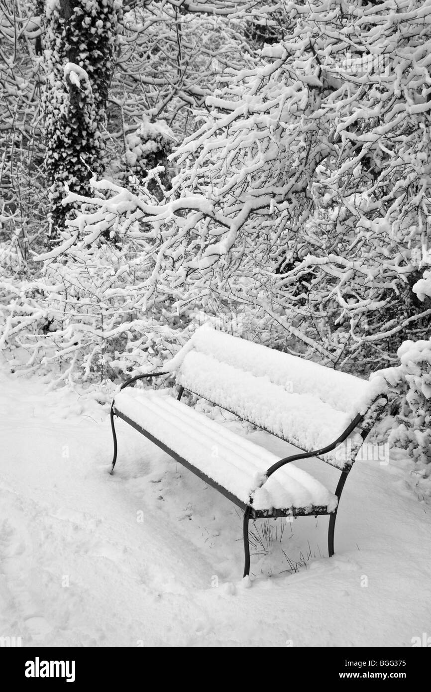Snow covered park bench and thickly covered tree branches after a heavy fall - Stock Image