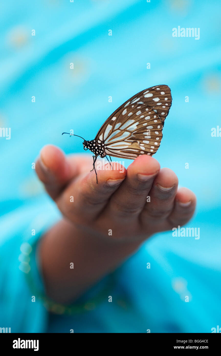 Tirumala limniace. Blue Tiger butterfly on the hands of an Indian girl. India Stock Photo