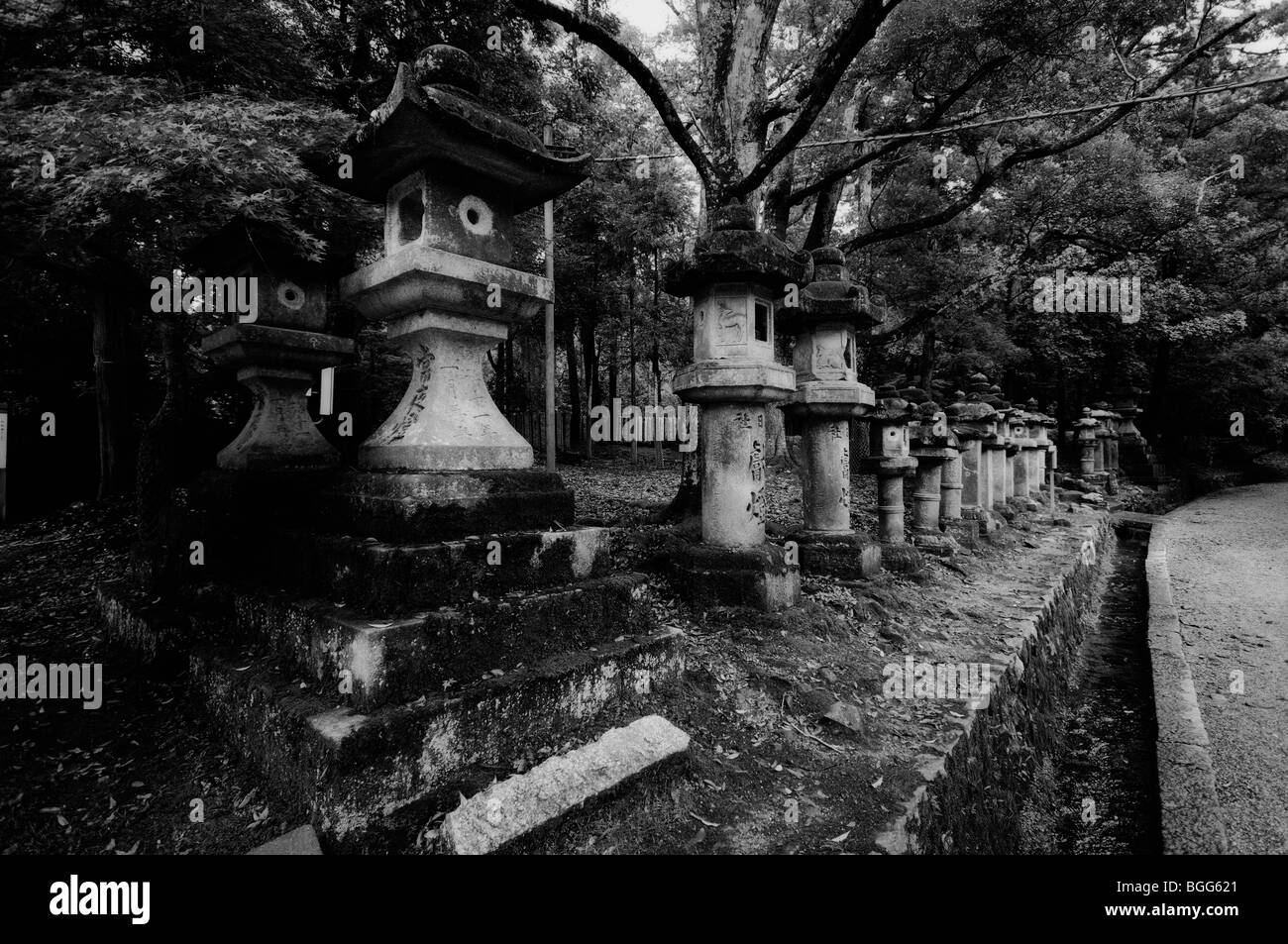 Japanese stone lanterns, leading to the Main Shrine. Kasuga-taisha Shrine (aka Kasuga Shrine). Nara City. Nara Prefecture. - Stock Image
