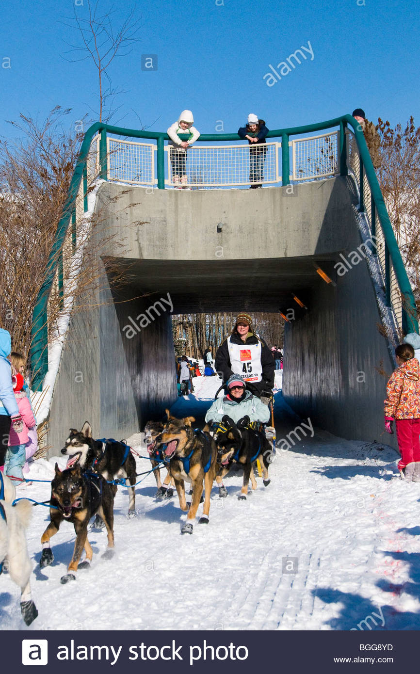 Musher Laura Daugereau under bridge during 37th Iditarod Dogsled Race, March 7, 2009, Anchorage, Alaska - Stock Image