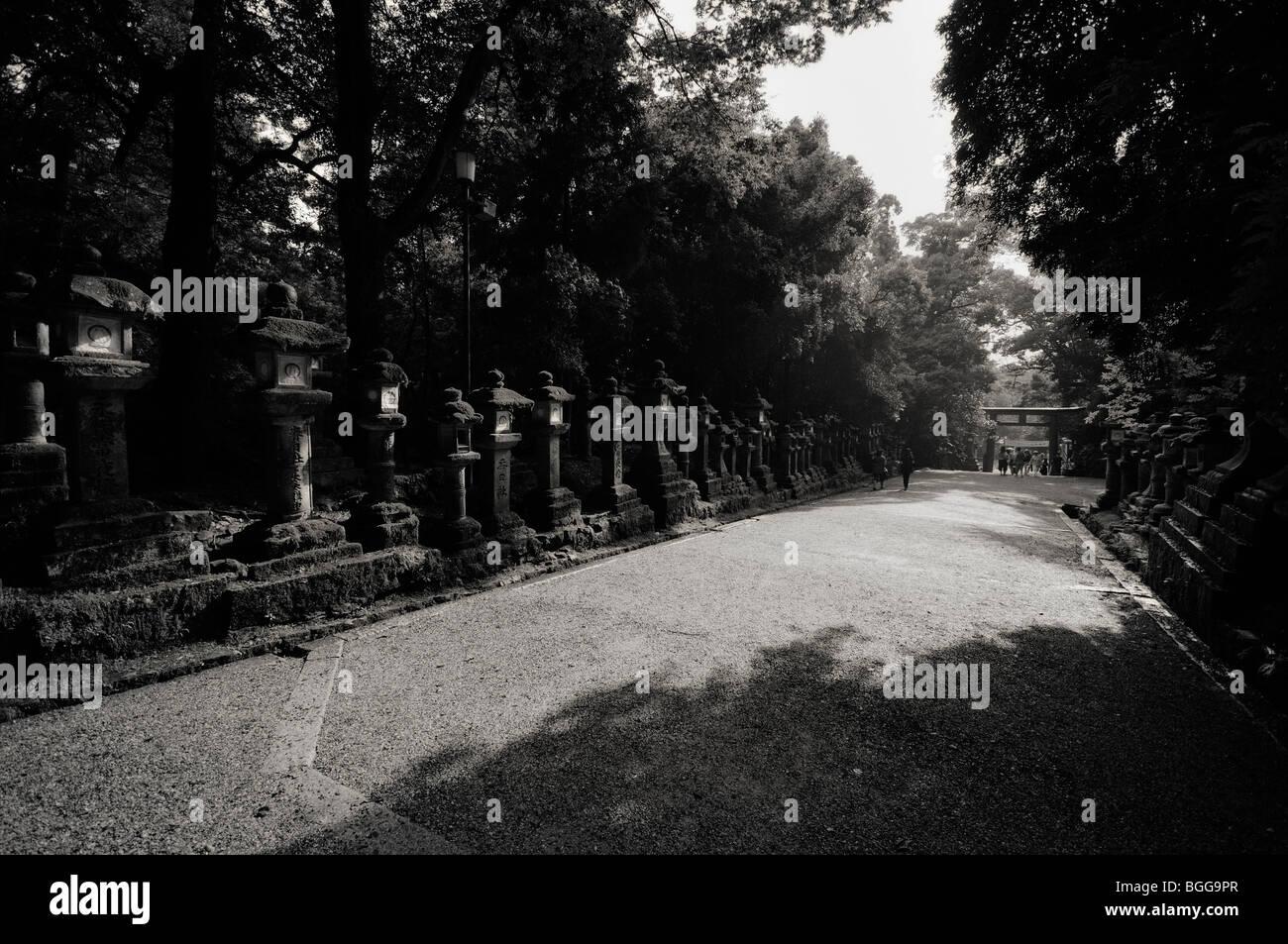 Japanese stone lanterns leading to the Main Shrine. Kasuga-taisha Shrine (aka Kasuga Shrine). Nara City. Nara Prefecture. - Stock Image