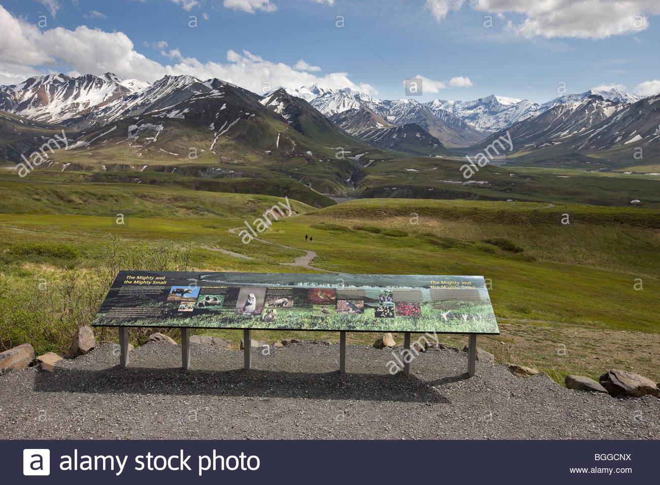 Interpretive trails and signs around the new Eielson Visitor Center in Denali National Park - Stock Image