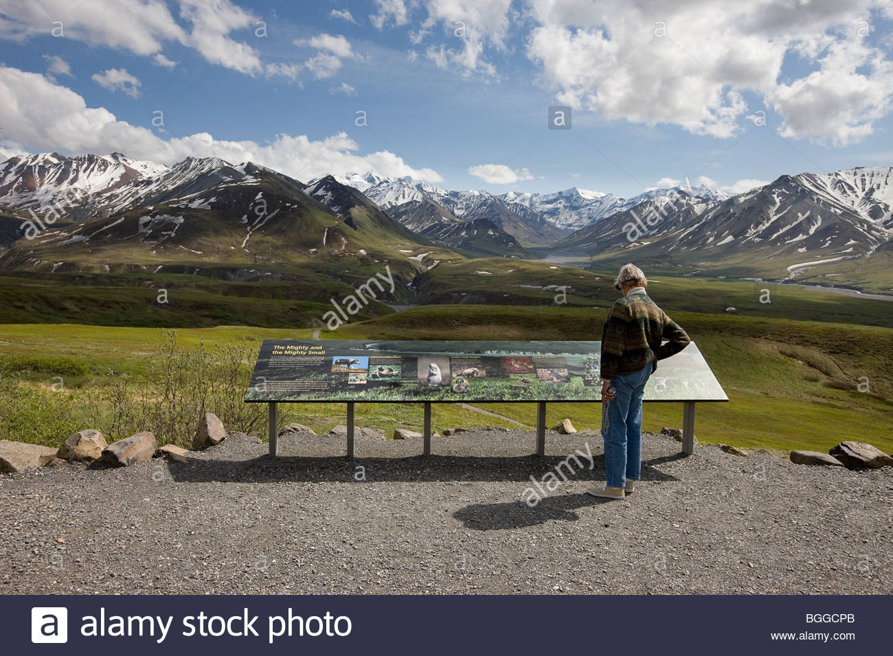 A park visitor stops to read a interpretive sign along a new trail at the Eielson Visitor Center in Denali National - Stock Image