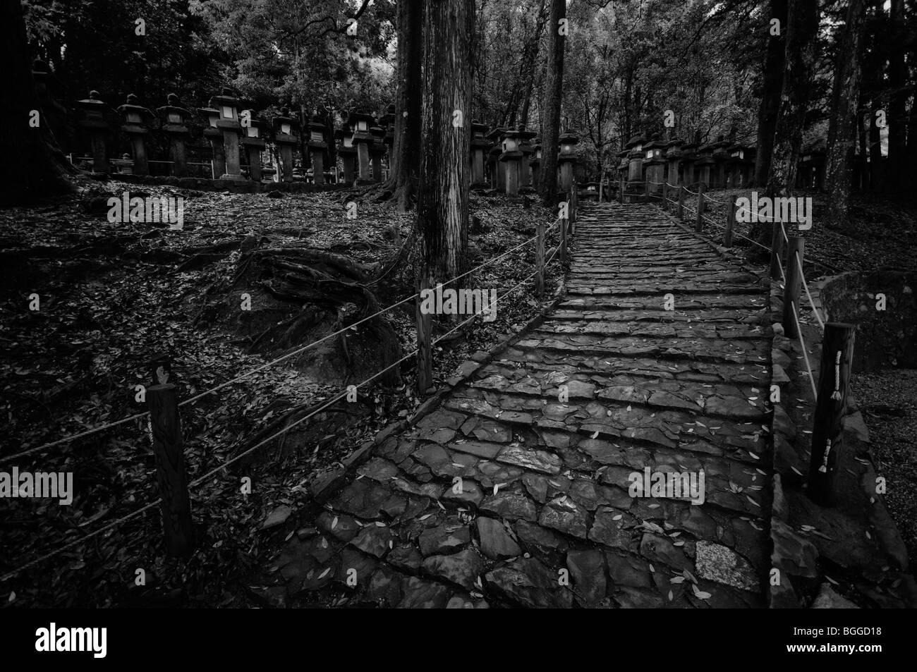Footpath and japanese stone lanterns. Kasuga-taisha Shrine complex (aka Kasuga Shrine). Nara City. Nara Prefecture. - Stock Image