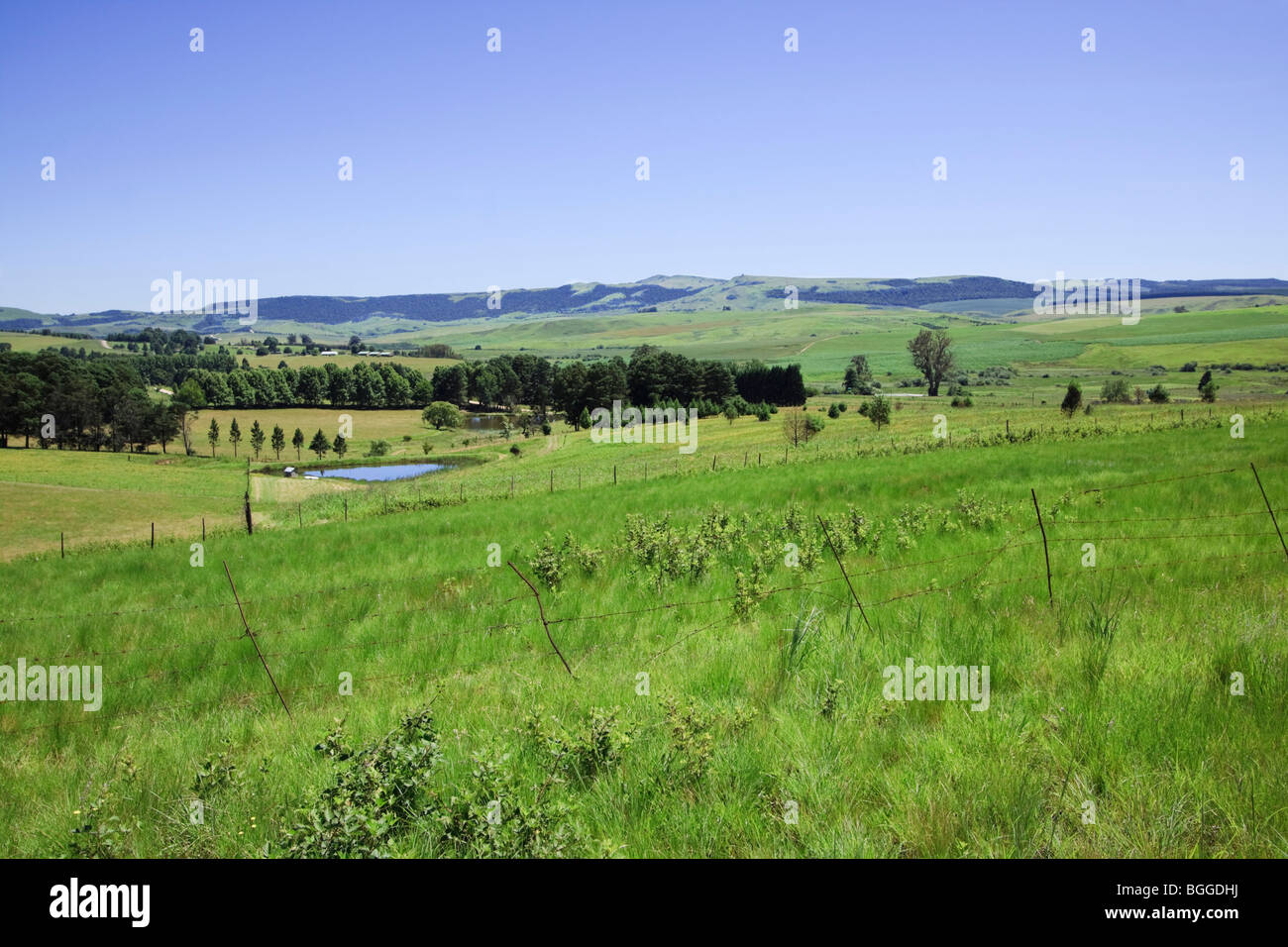 Green pastures with dam in the Drakensberg foothills, Midlands, Kwazulu Natal, South Africa. Color. Stock Photo