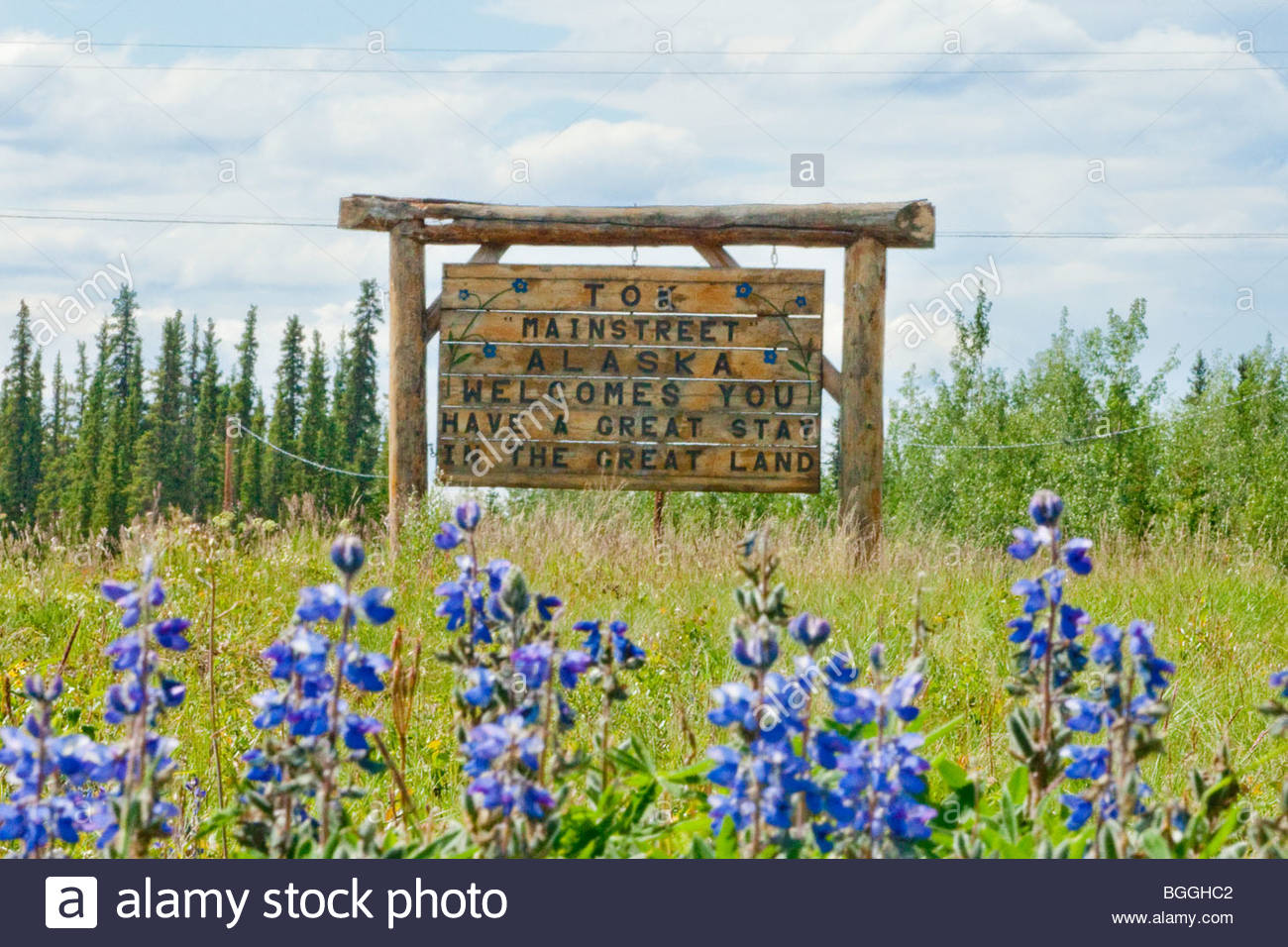 Alaska, Tok. Welcome to Tok sign. Summer. - Stock Image
