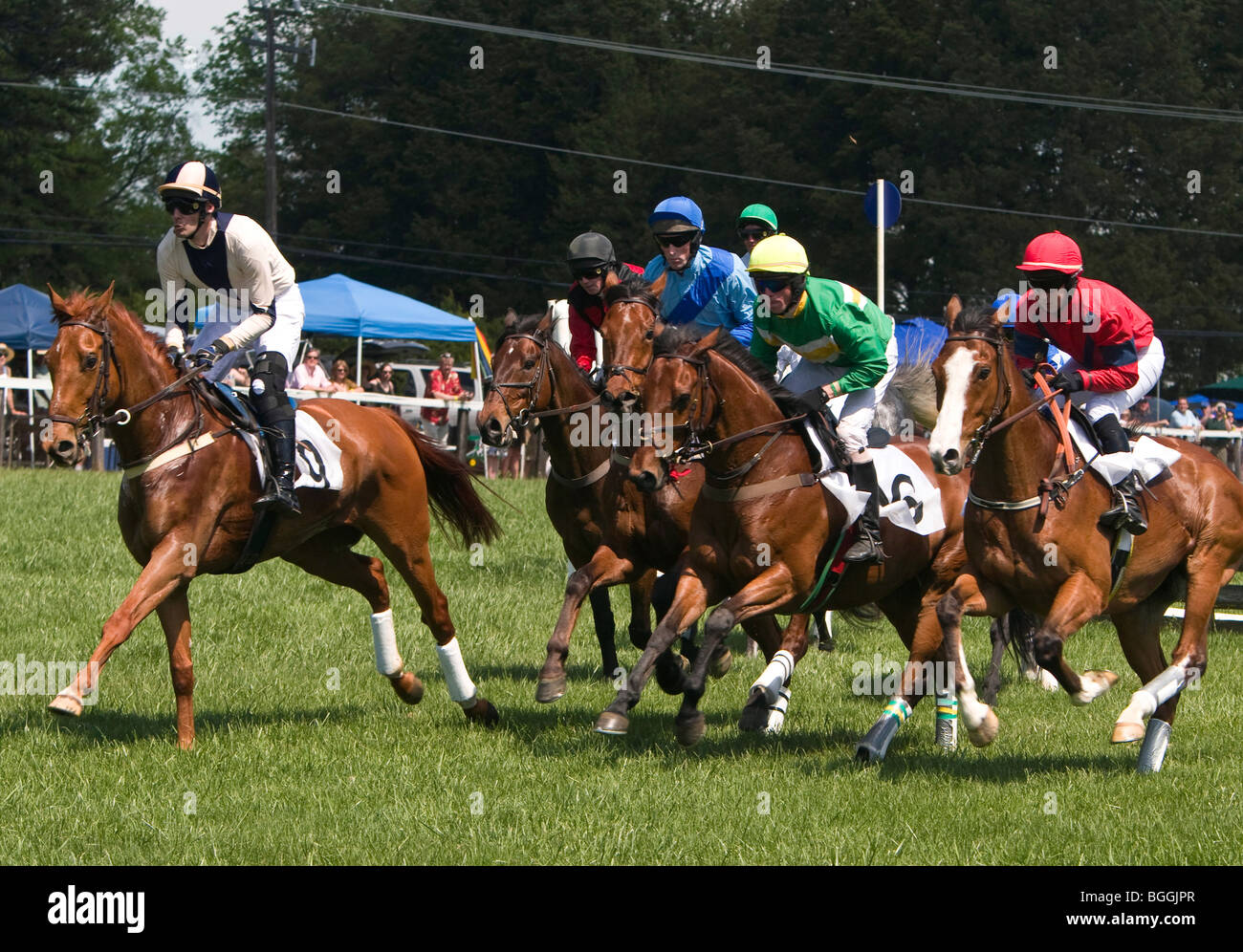 The 2009 Foxfield Races were held at the Foxfield Race Course in Charlottesville, Virginia, USA. - Stock Image