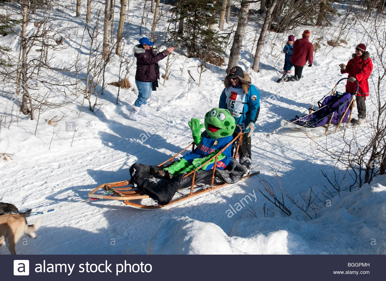 Alaska, Anchorage. the ceremonial start to the 2009 Iditarod sled dog race, along 4th Avenue - Stock Image