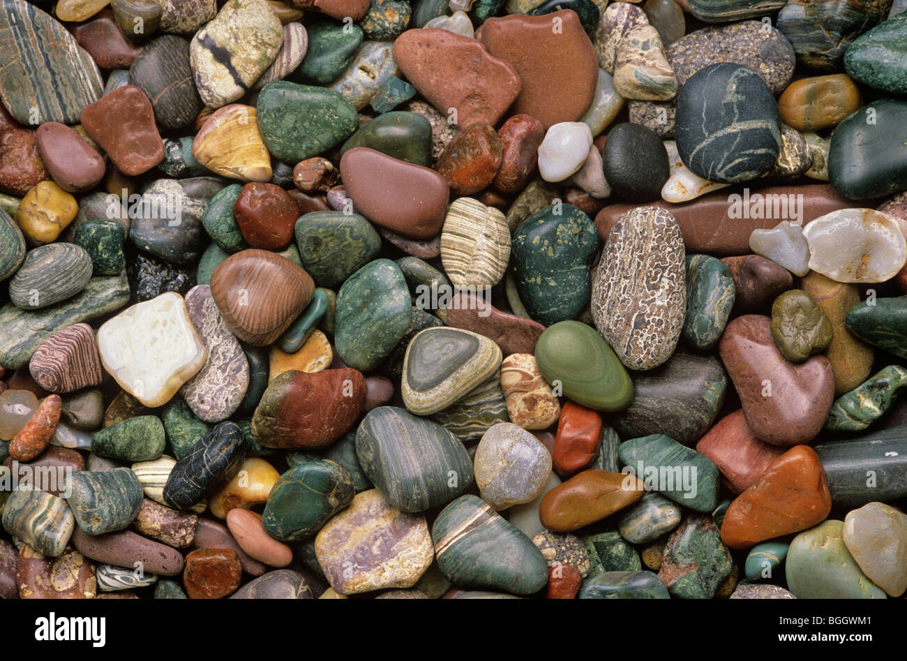 Beach pebbles collected from Agate Beach on Kupreanof Island in Southeast Alaska, USAStock Photo