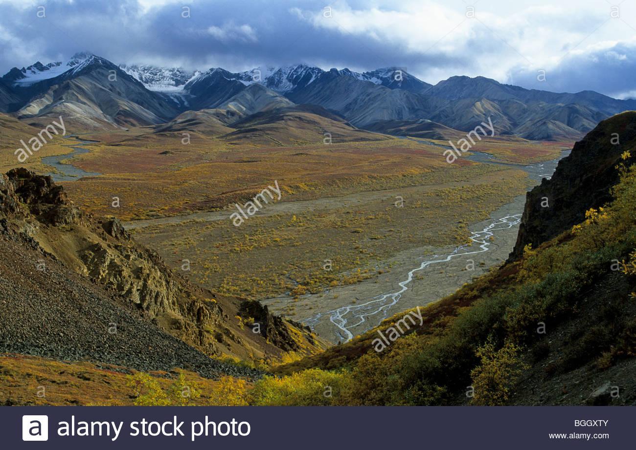 Alaska. Denali NP. Fall at Polychrome Pass. - Stock Image