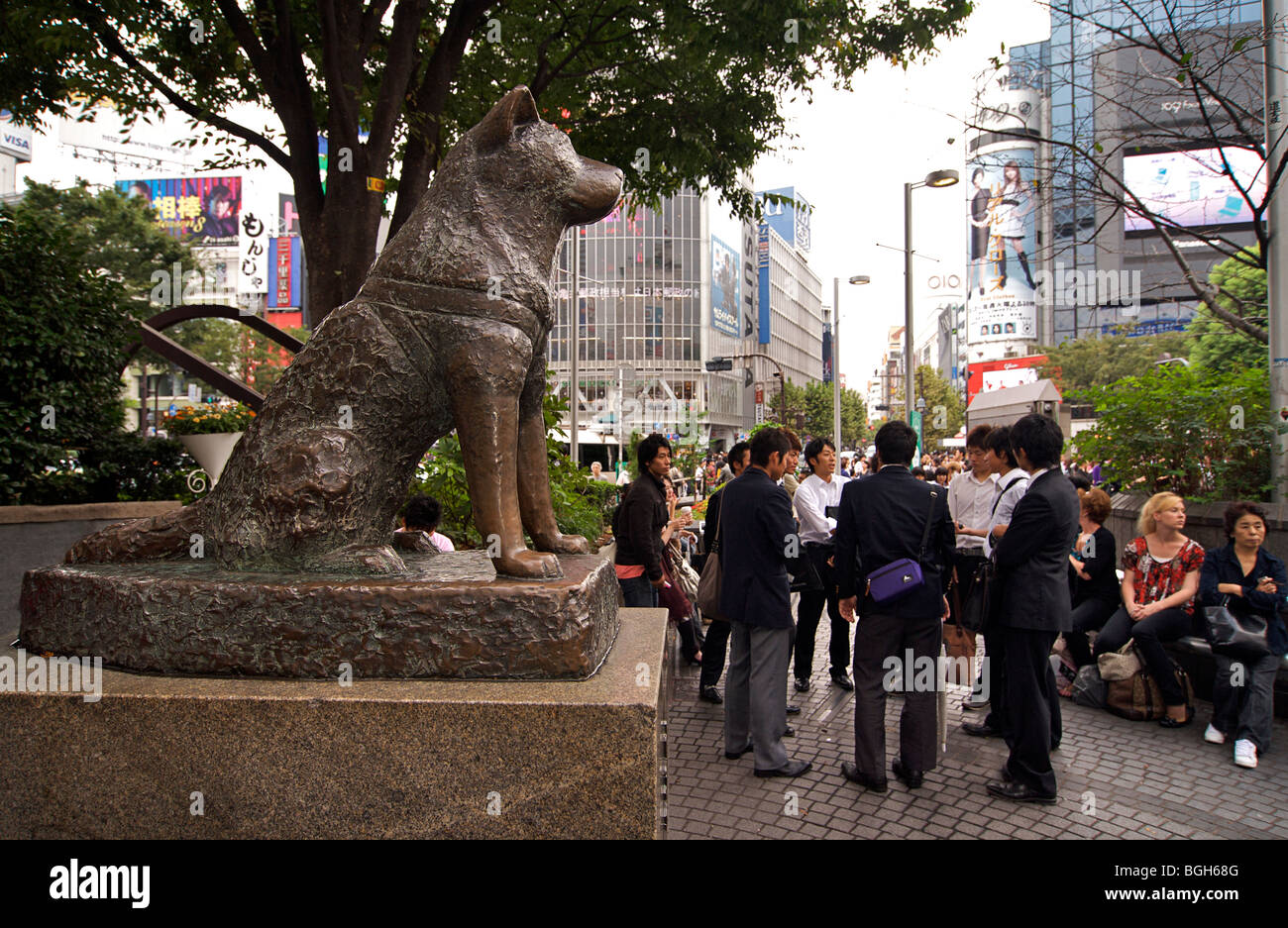Bronze statue of the famous dog Hachiko, Hachiko Square ...