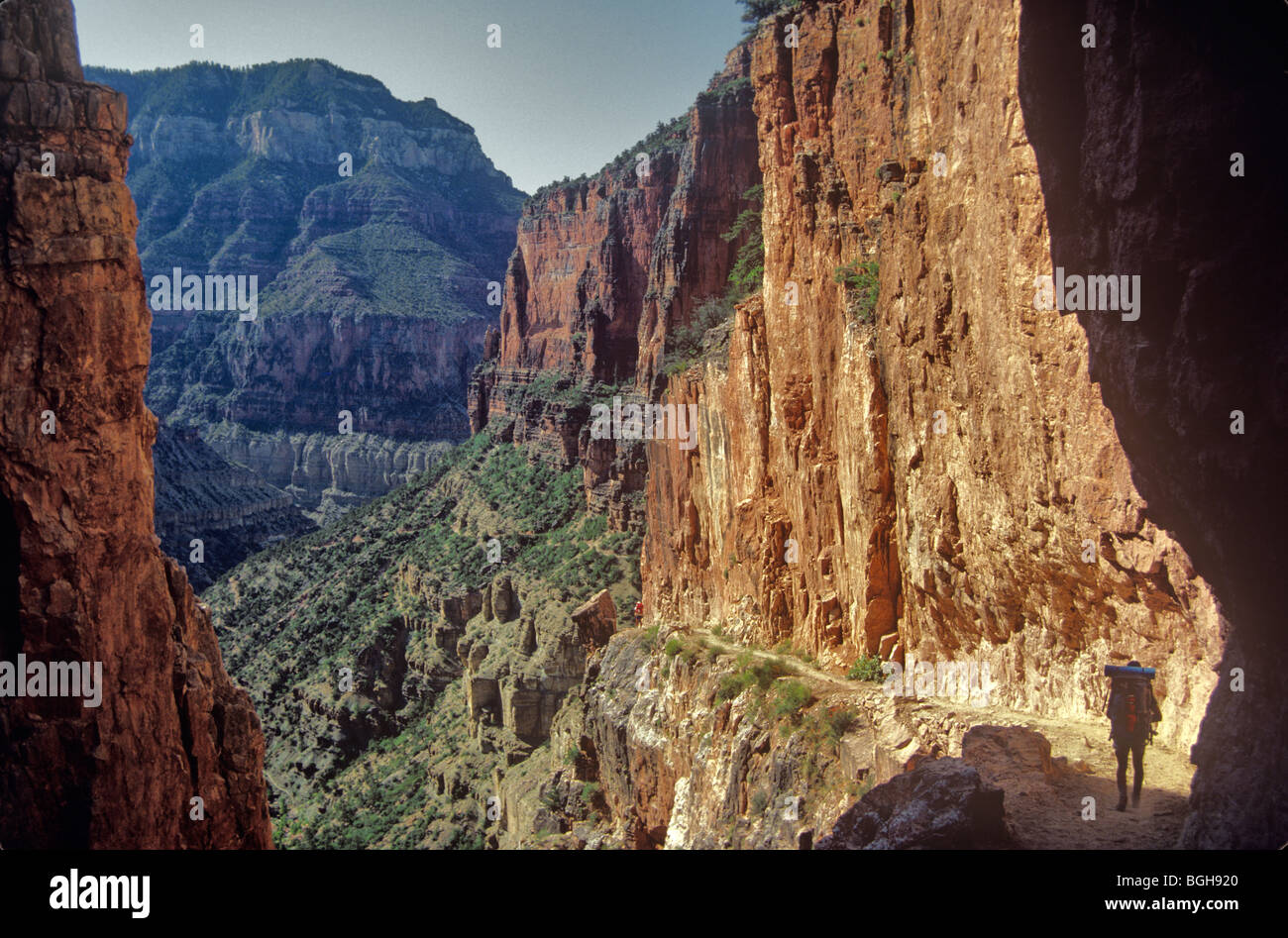Hiker on the North Kaibab Trail, a trail from the North Rim to the Colorado River, Grand Canyon National Park, Arizona - Stock Image