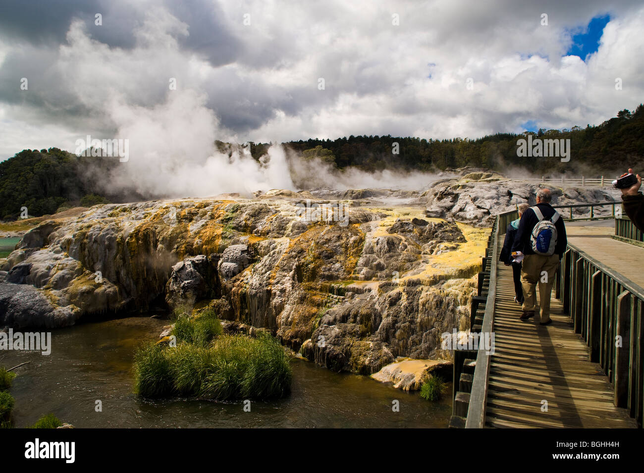 Whakarewarewa Thermal Reserve, North Island, New Zealand - Stock Image