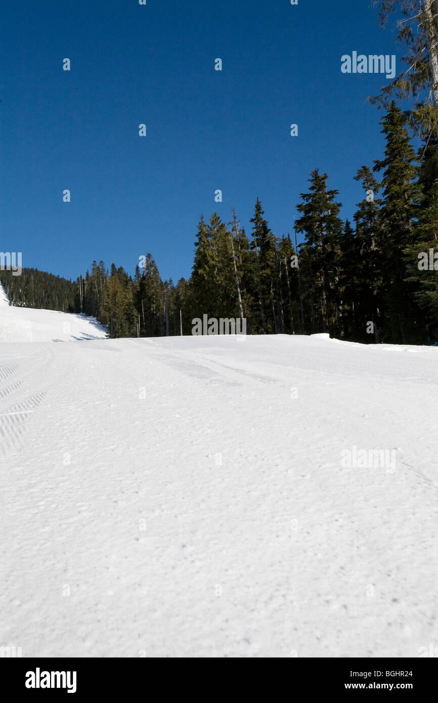 Ski Run at a ski hill - Stock Image