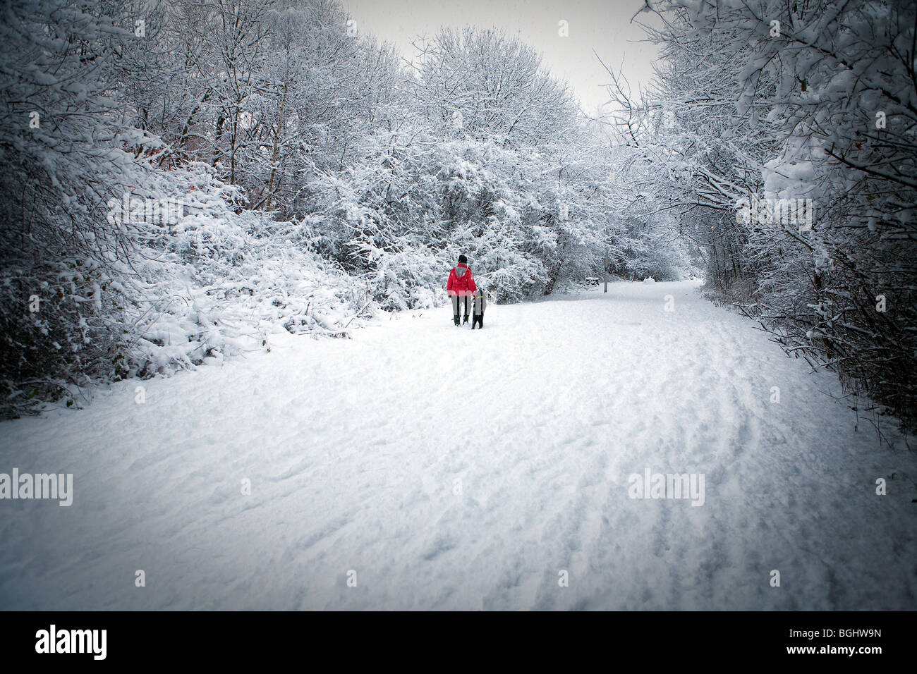 Woman in a red coat walks her labradoodle puppy along the snow-covered former canal towpath near Stockton Heath, - Stock Image