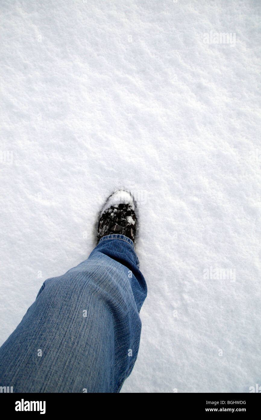 The left leg of a man walking in freshly fallen snow. UK 2010 - Stock Image