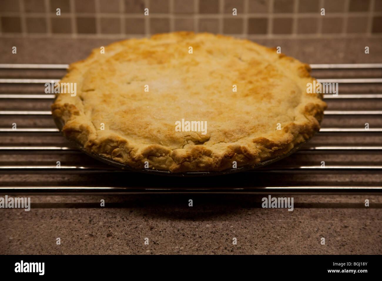 Homemade apple pie , Sheffield England. - Stock Image