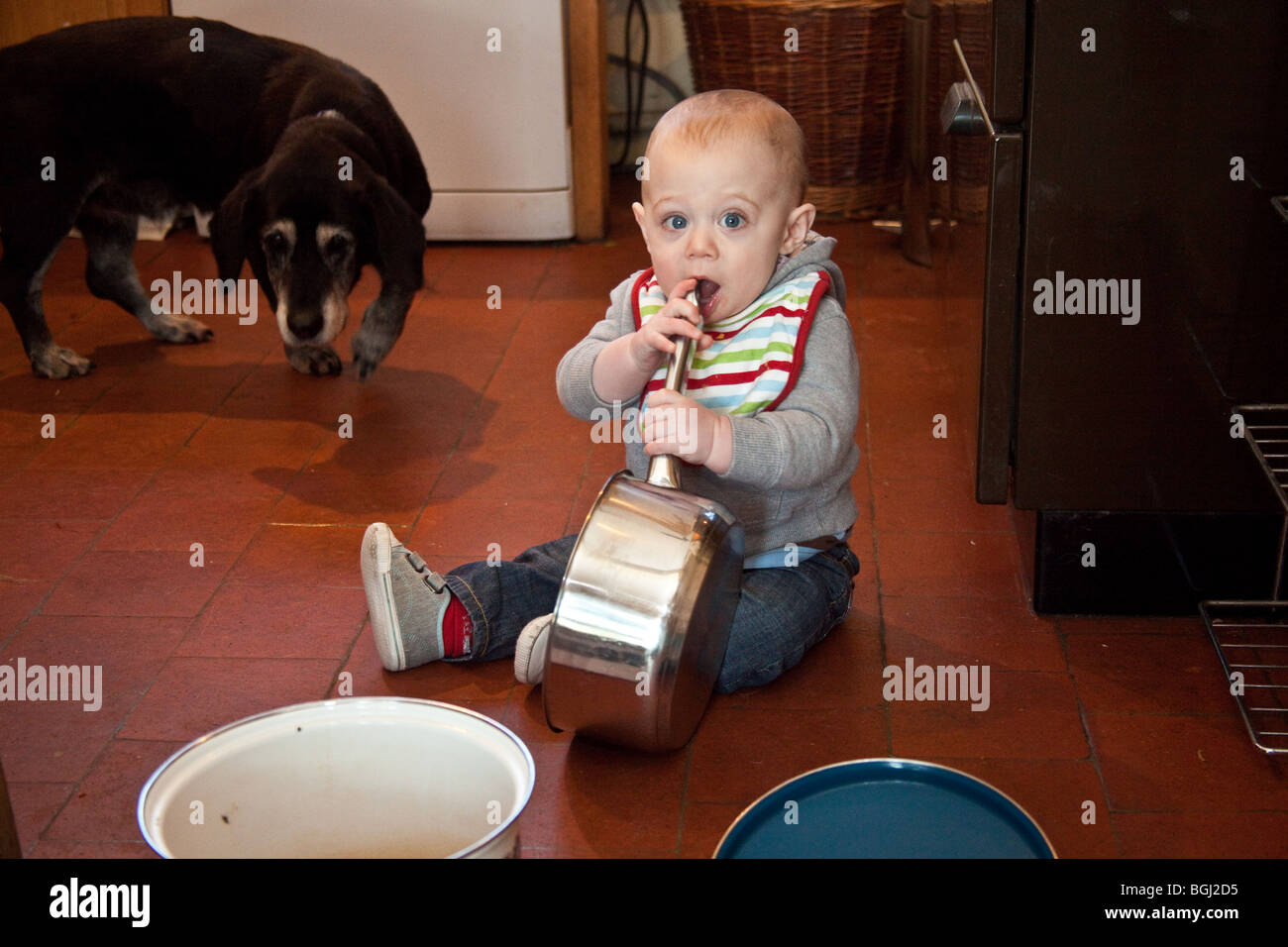 Baby boy (eight months old) playing with pots and pans on the kitchen floor. - Stock Image