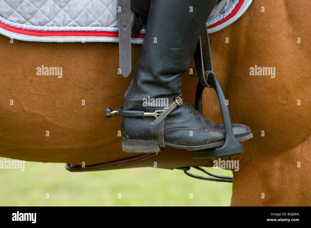 horse rider with foot in stirrup - Stock Image